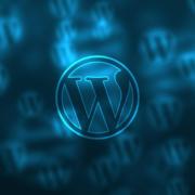 Wordpress.com ou .org